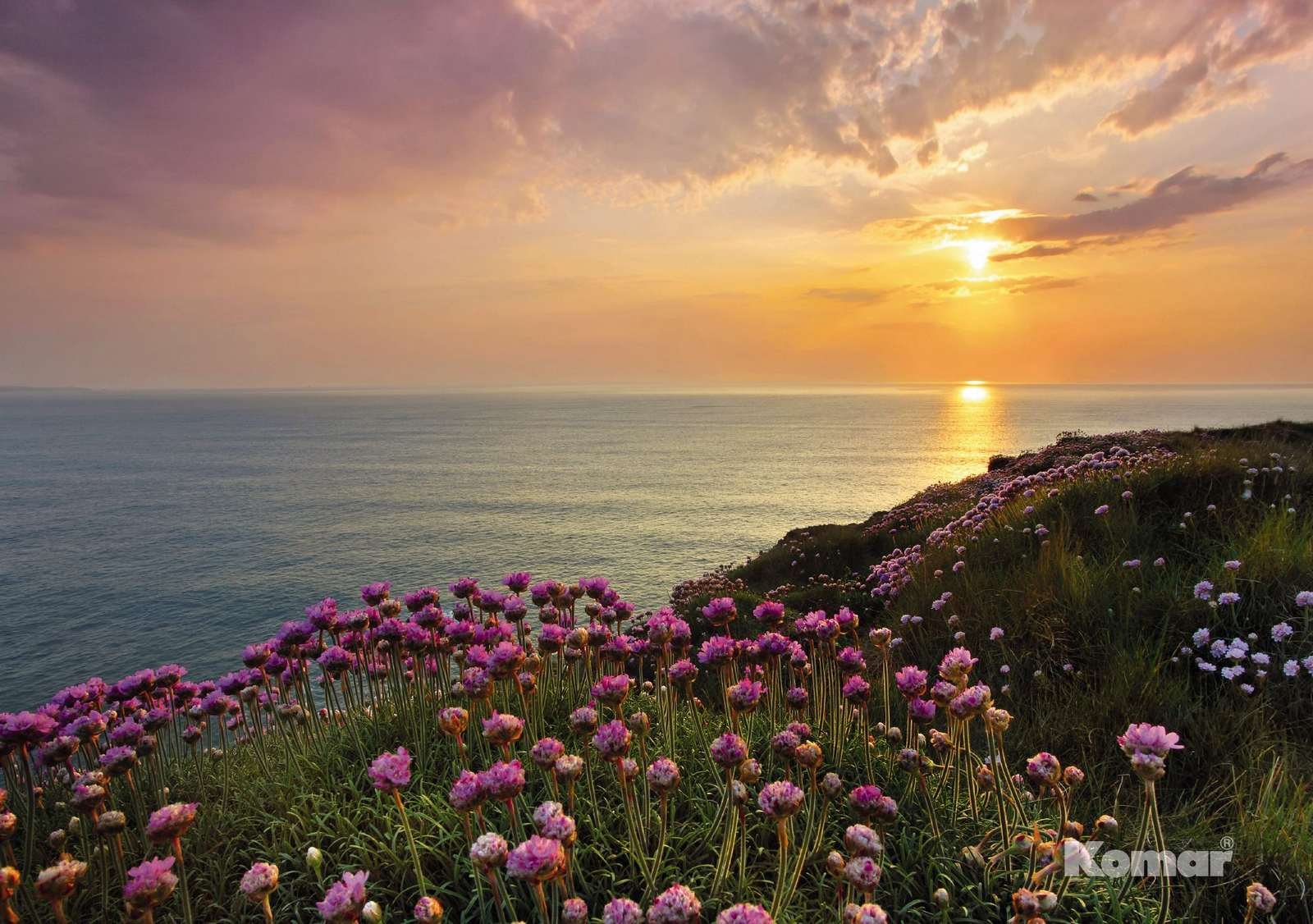 fototapete lands end 368x254 sonnenuntergang klippen rosa violette blumen bl ten ebay. Black Bedroom Furniture Sets. Home Design Ideas