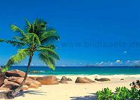 Tropenthemen, Strand, Sonne, Palmen, Inseln