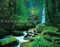 Wasserfaelle, Wildnis, Bach und Fluss
