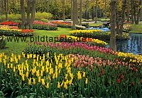 Gartentapeten, Parks, Schloss